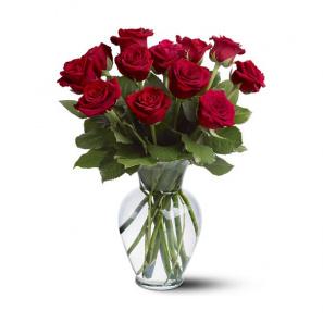 12 longues roses rouges buy at Fleur Quebec