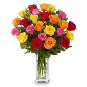 2 Douzaines longues tiges de Roses Mélangées buy at Fleur Quebec