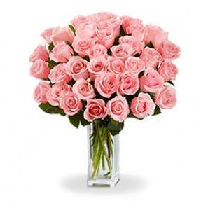 3 Douzaines de longues tiges de roses roses buy at Fleur Quebec