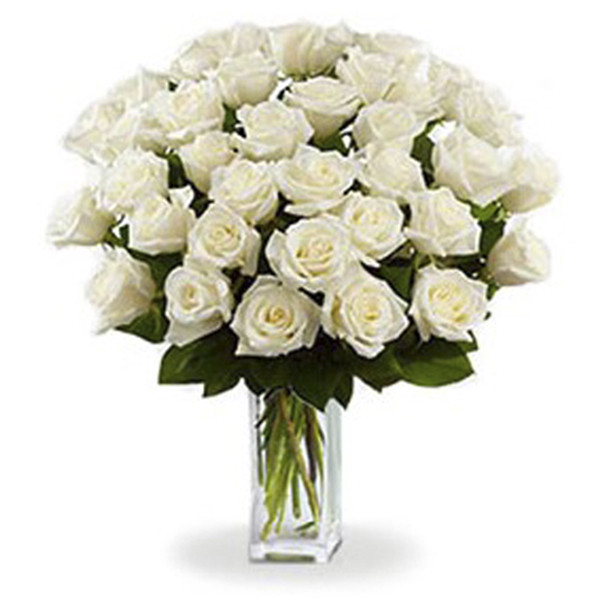 3 douzaines de longues tiges de roses blanches buy at Fleur Quebec