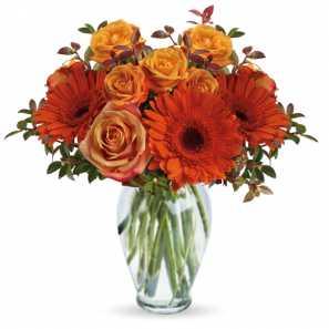 Voici pour Vous buy at Fleur Quebec