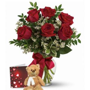 Combo 6 Roses Rouges & Ours en Peluche