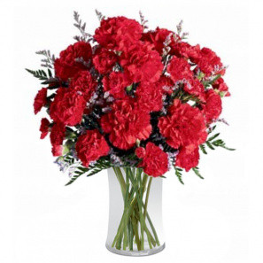 Explosion de Carnation buy at Fleur Quebec