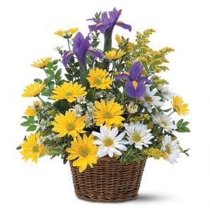 Sourire Panier Floral buy at Fleur Quebec